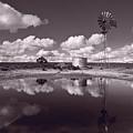 Ranch Pond New Mexico by Steve Gadomski