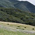 Rancho Sierra Vista Satwiwa Mountains Portrait by Kyle Hanson