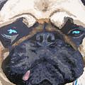 Random Dog Number 3 by Ricklene Wren
