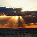 Randy's Shine by Norman Kraatz
