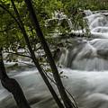 Rapids In Forest  by Sven Brogren