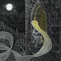 Rapunzel By Night by Philip Harvey