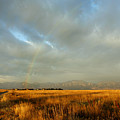 rare Morning Rainbow by Marilyn Hunt