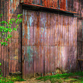 Rats Castle Farm Barn Door by Nigel Bangert