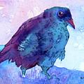 Raven At Dusk by Jo Lynch