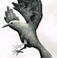 Raven by Janremi B