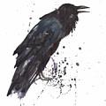 Raven  Black Bird Gothic Art by Alison Fennell