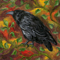 Raven In Autumn by FT McKinstry