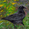 Raven In Goldenrod by FT McKinstry