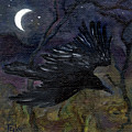 Raven In Stars by FT McKinstry