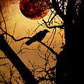 Raven Moon by Bill Cannon
