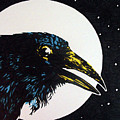 Raven Moon by Lindi Levison