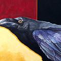 Raven Of The Tomorrow Wings by J W Baker