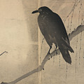 Raven Old Japanese Drawing by Karla Beatty