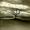 Raven Valley by Jacky Gerritsen