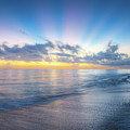 Rays Over The Reef by Debra and Dave Vanderlaan