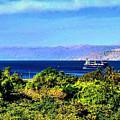 Rea Sea Aqaba by Yara Thaher