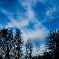 Reaching For Blue by Stephanie Hanson
