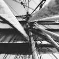 Ready For Sail by Unsplash