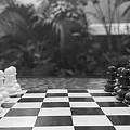 Ready Set Chess by Marisa McFarlane