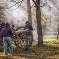 Ready The Cannons by Susan Rissi Tregoning