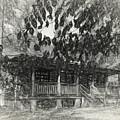 Rear Of Cabin by Thomas Fields