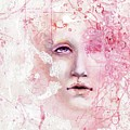 R.e.d. 6 by Lauren Schwind