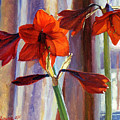 Red Amaryllis by Jeanne Young