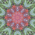 Red Amaryllis Trio Kaleidoscope by Marian Bell