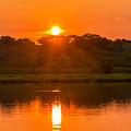 Red And Orange Jungle Sunset by Jess Kraft