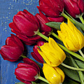 Red And Yellow Tulips by Garry Gay