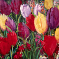 Red And Yellow Tulips by Sally Seago