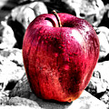 Red Apple by Karen M Scovill