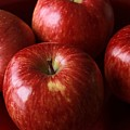Red Apples by FL collection