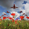 Red Arrows Poppy Fly Past by J Biggadike
