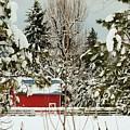 Red Barn At Christmas by Sylvia Beatty