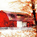 Red Barn by Gina Signore