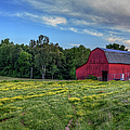 Red Barn In A Yellow Field  by Larry Braun