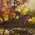 Red Barn In Autumn by Joann Vitali