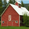 Red Barn Montana by Diane Greco-Lesser