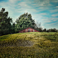 Red Barn On The Hill by Jai Johnson