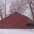 Red Barn Trees Snow by Kevin Callahan