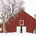 Red Barn Winter Country Landscape by James BO  Insogna