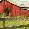 Red Barn With Vines by Michael L Kimble
