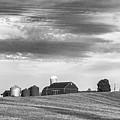 Red Barns Bw by Steve Harrington