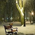 Red Bench In The Park by Jaroslaw Grudzinski