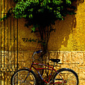 Red Bicycle by Mexicolors Art Photography