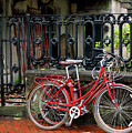 Red Bicycles by Nicholas Blackwell
