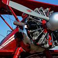 Red Biplane by Mark Grayden