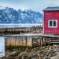 Red Boathouse In Norris Point, Newfoundland by Mike Organ